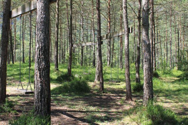 altalene nel bosco.JPG
